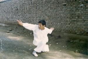 Feng-Yicun10